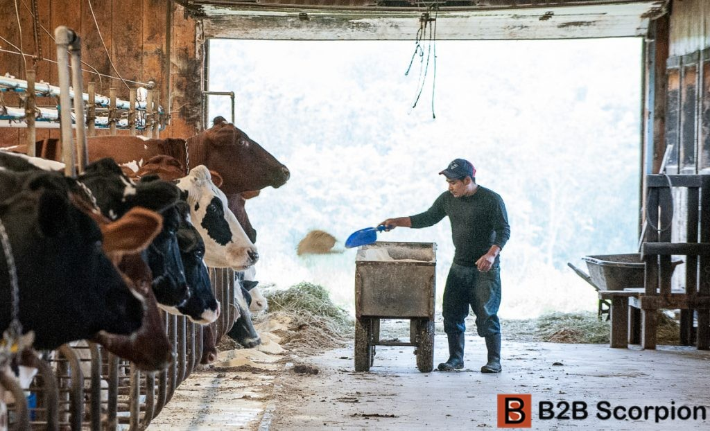 Dairy Farmers Contact Lists